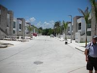 Anémona - Desarrollo