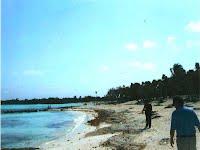 Playa - Rivera Maya