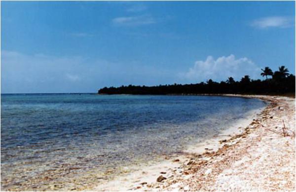 Terreno en Manatí, Quintana Roo.